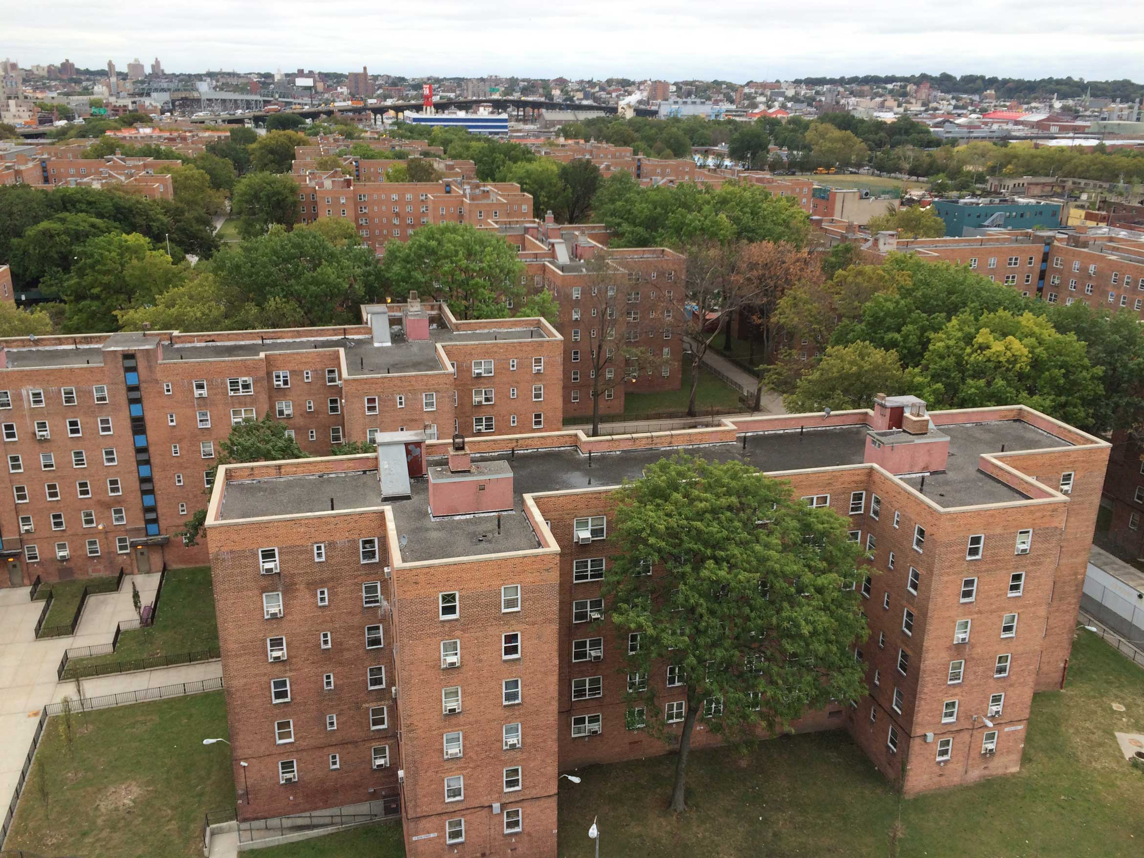 An aerial view of the Red Hook Houses showing mature trees as well as the ubiquitous fences around green spaces. Photo courtesy of KPF and OLIN